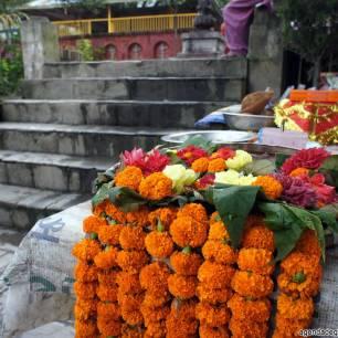 sette giorni in nepal fiori offerte al dio vishnu vestizione cosa vedere nella valle di kathmandu