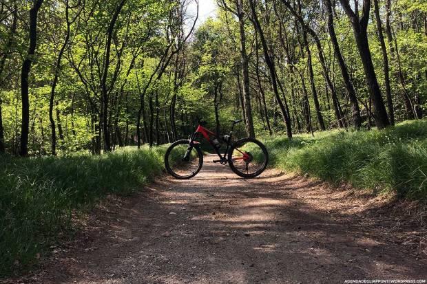 commencal meta am ht sentiero 10 mountain bike campo dei fiori varese