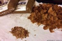 I semi estratti dalle pigne di larice ormai secche