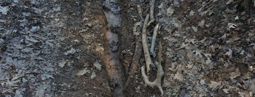 tracce di moto da enduro nei boschi della valle olona
