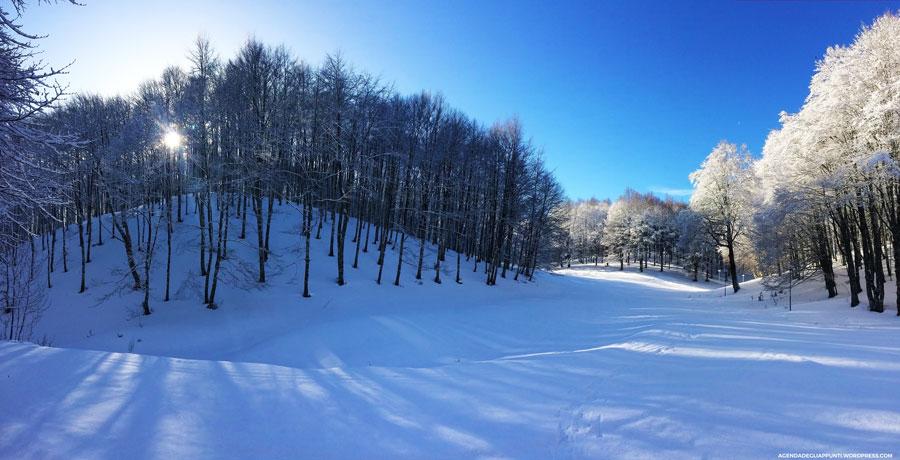 usare le ciaspole sul monte terminillo facili trekking sulle piste da sci di fondo o in freeride sulla neve fresca