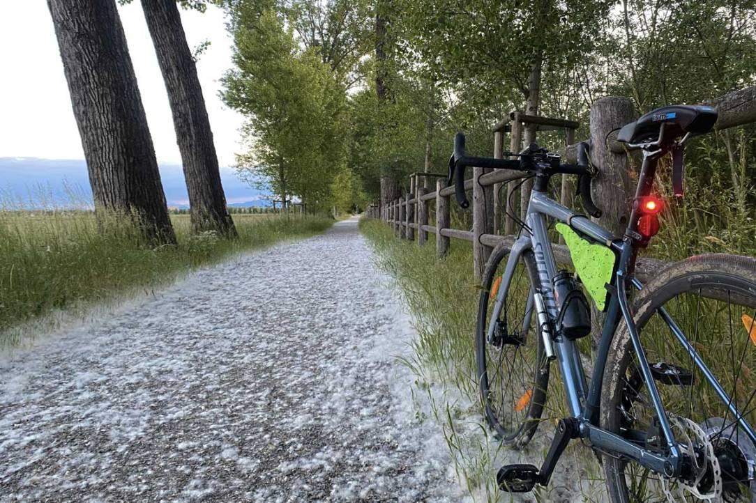in foto una bicicletta gravel bike specialized sulle strade ciclabili del parco delle groane