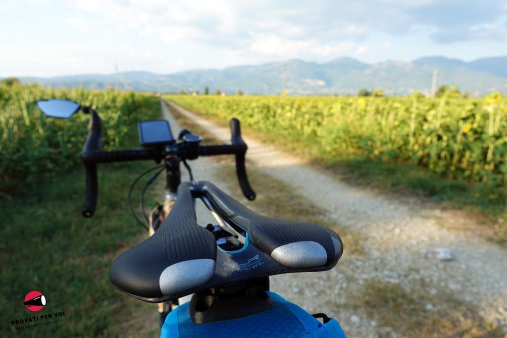 una sella per gravel bike, una strada bianca e un campo