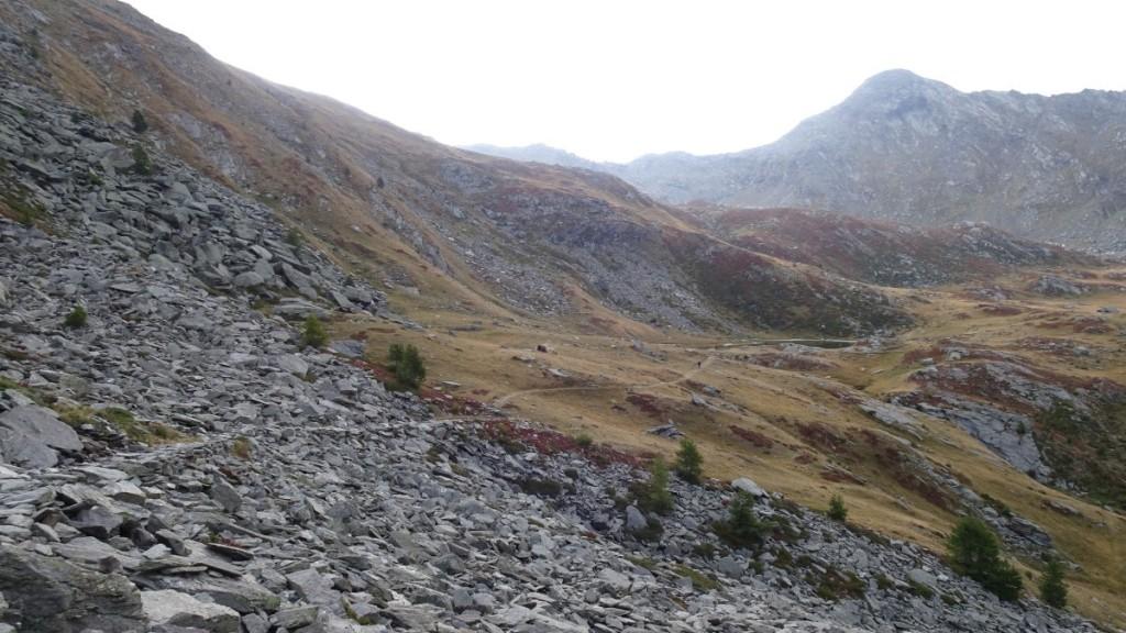 un panorama di montagna di prima mattina con rocce in primo piano ed erba secca in lontananza
