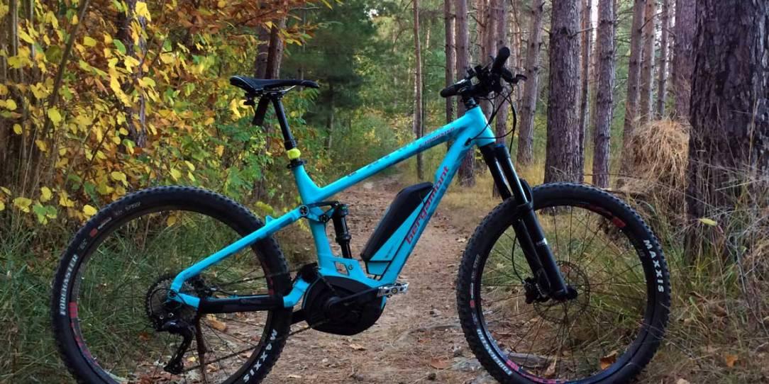 una mountain bike a pedalata assistita sul sentiero in una pineta tra i colori dell'autunno