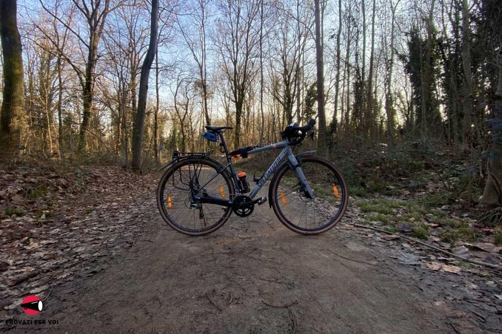 una bicicletta occupa la carreggiata di una ciclovia nel bosco