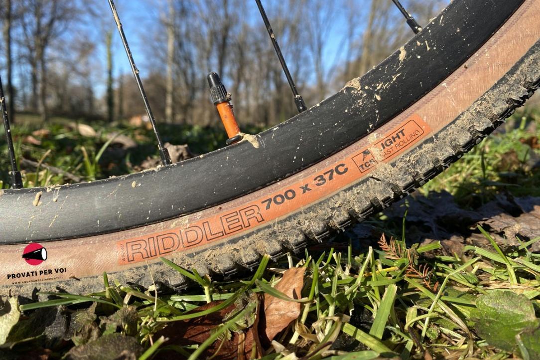 primo piano sulla spalla color beige di uno pneumatico per bicicletta gravel bike che poggia su ciuffi d'erba verde e foglie secche