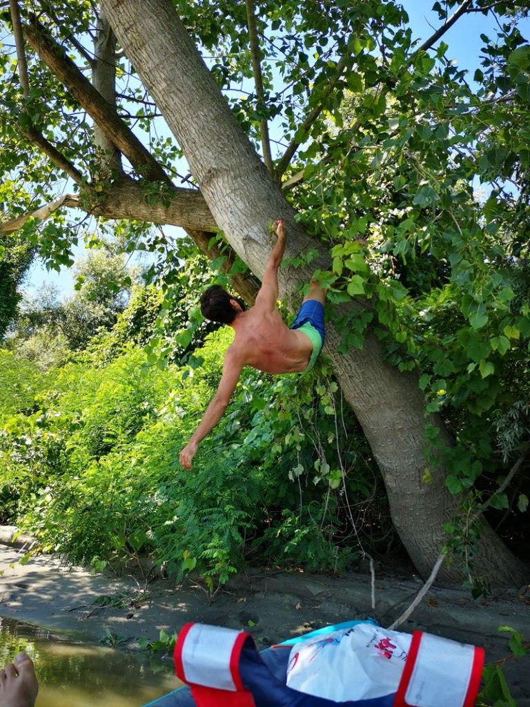 Arrampicata sugli alberi lungo il PO